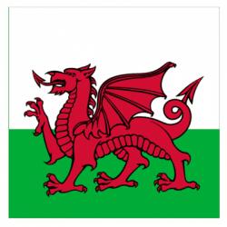 Welsh Frolics